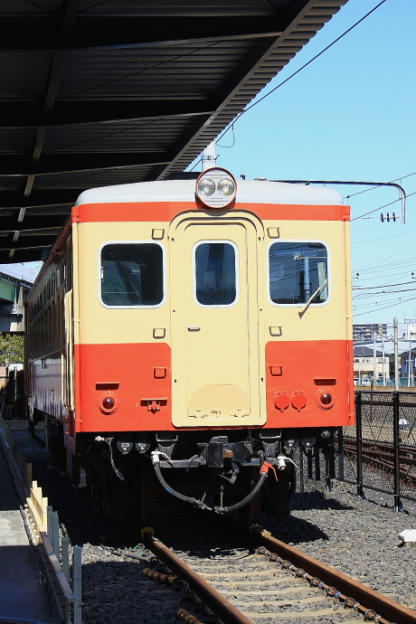 IMG_0742(1).JPG