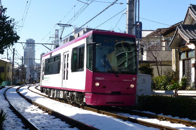 P1010126(1).JPG