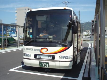 kochi5.jpg