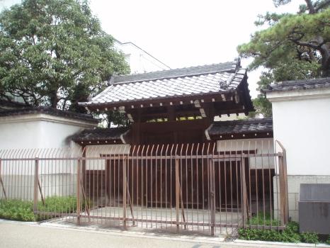 matuzaka1.jpg