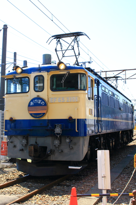 IMG_0919-1.JPG