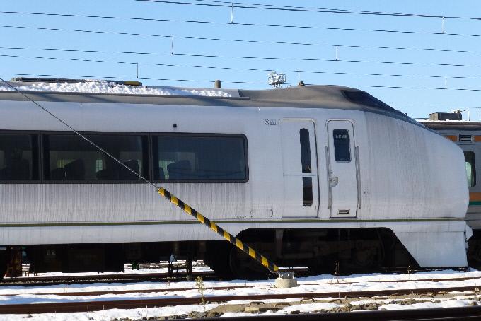 P1010058(1).JPG