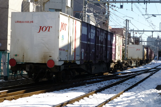 P1010069(1).JPG