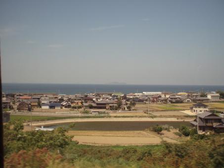 kochi6.jpg
